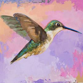 Hummingbird #2 - David Palmer