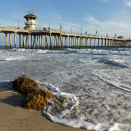 John Daly - Huntington Beach Pier and Seaweed