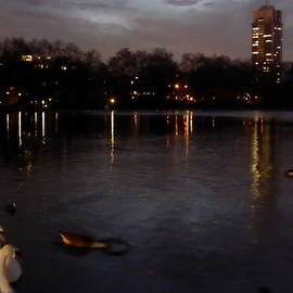 Perggals - Hyde Park At Dusk