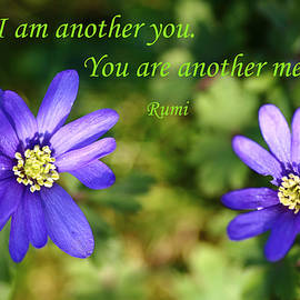 Rumyana Whitcher - I Am Another You
