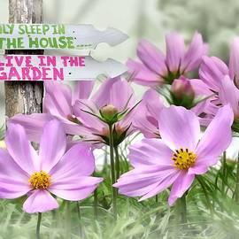 Nina Bradica - I Live In The Garden-1