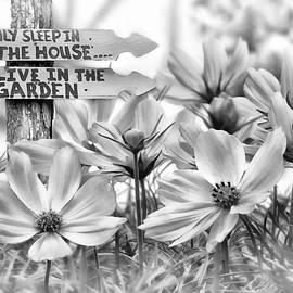 Nina Bradica - I Live In The Garden-2