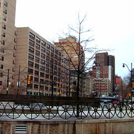 Lori Pessin Lafargue - I Love New York