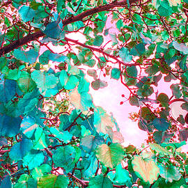 Guy Ricketts - I Wonder What Leaves Think