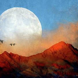R christopher Vest - Ibis Pass Across Moon