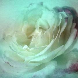 Wallaroo Images - Ice Maiden