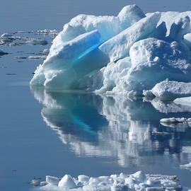 David T Wilkinson - Ice Shove Reflection