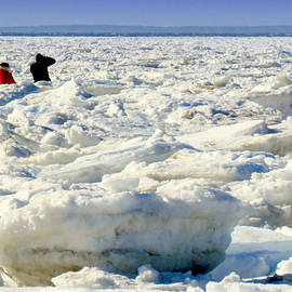 Lori Pessin Lafargue - Icebergs Swallow Cape Codders