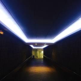Julian Darcy - Illumination