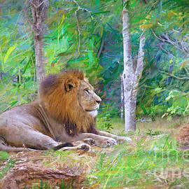 Judy Kay -  Impressionable Lion
