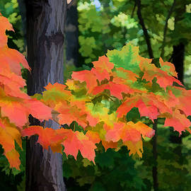 Georgia Mizuleva - Impressions of Forests - The First Red Maple Leaves