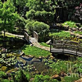 Mary Machare - In a Midwest Japanese Garden