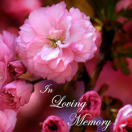 Shelley Neff - In Loving Memory Spring Pink Cherry Blossoms