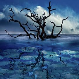 Debra and Dave Vanderlaan - In The Deep Blue Sea