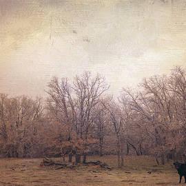 Toni Hopper - In the field