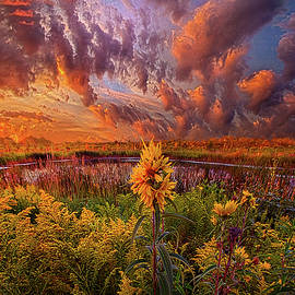 Phil Koch - In The Warmth Of Nature