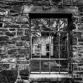 Ashley M Conger - In The Window