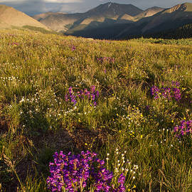 Aaron Spong - Independence Pass