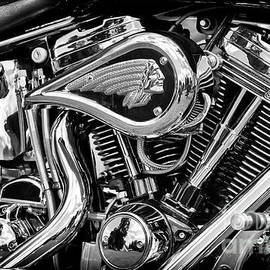 Indian Chief Centennial Monochrome - Tim Gainey