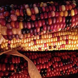 Connie Fox - Indian Corn