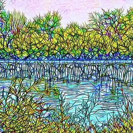 Joel Bruce Wallach - Indigo Pond - Lake In Boulder County Colorado
