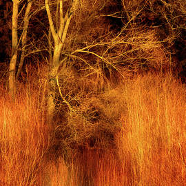 Wim Lanclus - Inferno