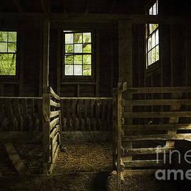 Debra Fedchin - Inside the Hog Barn