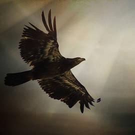 Jordan Blackstone - Inspirational Art - The Light of Daring