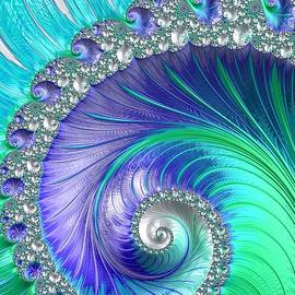 Mo Barton - Inspired by Nature Fractal Spiral