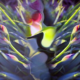 Tina M Wenger - Iris Abstract
