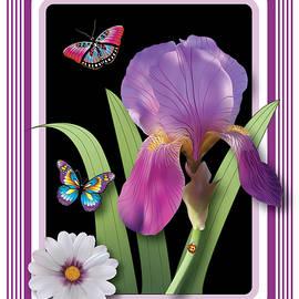 Cathy Franklin - Iris And Daisy Art