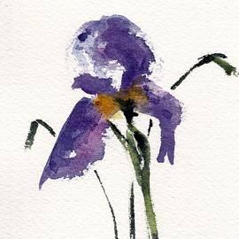 Anne Duke - Iris