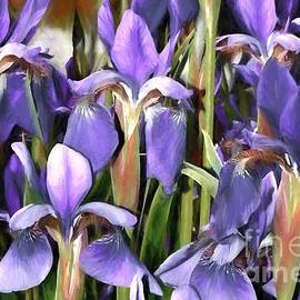 Benanne Stiens - Iris Fantasy