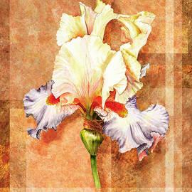 Irina Sztukowski - Iris Flower Decor