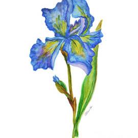 Olga Hamilton - Iris Flower