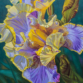 Fiona Craig - Iris Garden 4