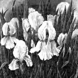Jacquie King - Iris Mist II