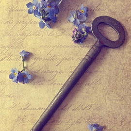 Alison Burford - Iron Key and Forget Me Nots