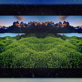 Camilla Hones - Is Not It Wonderful? 😍💜 #green