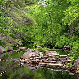 Betty Denise - Isinglass River, Barrington, NH