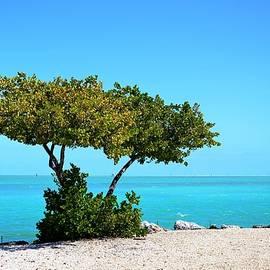Nathalie Duhaime - Islamorada  Florida Keys