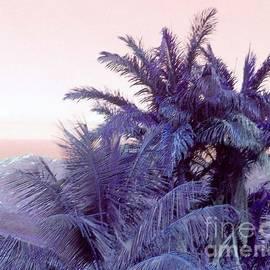 Iris Gelbart - Island Beauty
