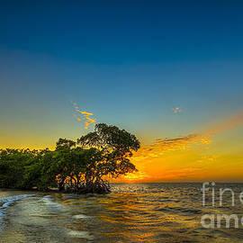 Marvin Spates - Island Paradise