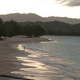 E Faithe Lester - Island Shimmers