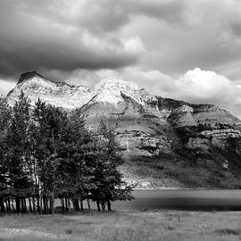 Allan Van Gasbeck - Isolated Copse on Waterton Lake