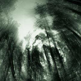 Ed  Cheremet - It was a Dark and Creepy Night