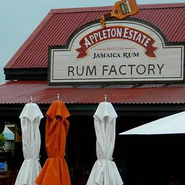 Arlane Crump - Jamaica Rum Factory