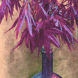 Shelly Weingart - Japanese Maple Leaves in Muted Violet