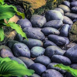 Julie Palencia - Japanese Rock Garden