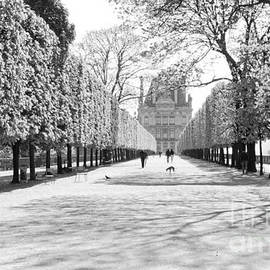 Alex Cassels - Jardin des Tuileries